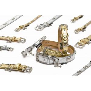 Luxusní obojek zlatý s přeskou 42x2,2 - DOPRODEJ