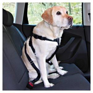 Postroj do auta pro psa M 50-70cm