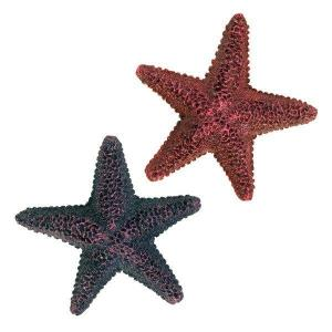 Barevné dekorativní hvězdice
